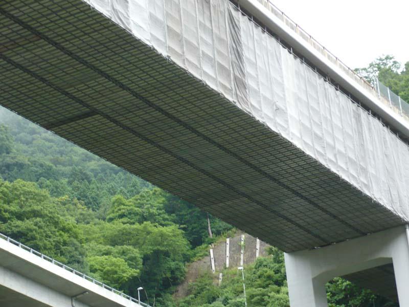 浅場塗装 浅利橋 / (2007)